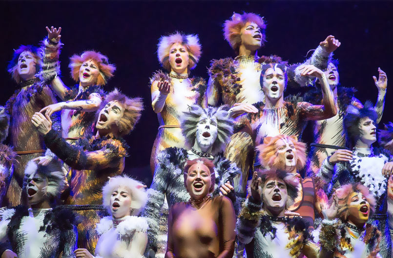 Cats The Musical Full Video